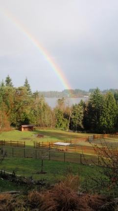 Elk Lake rainbow
