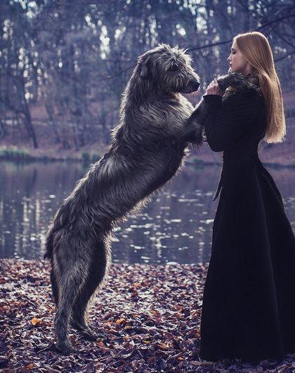 wolfhound&girl